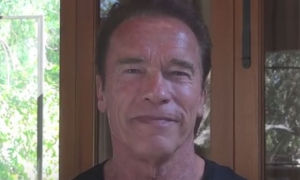 Arnold Responds to Stone Cold Steve Austin